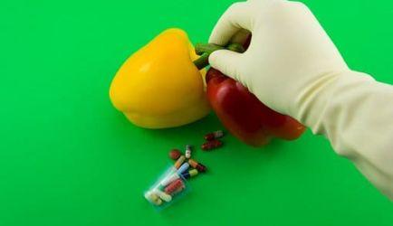 5 Cursos de Auxiliar de Laboratorio de Industrias Alimentarias para que mejores laboralmente