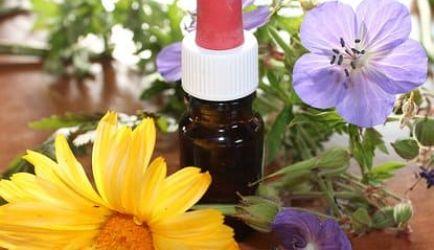 ¿Quieres estudiar Homeopatía a Distancia? Los 7 principales Centros de Formación para formarte