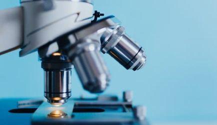¿Estás buscando formarte en FP Grado Superior en Laboratorio Clínico y Biomédico? Descubrimos los Cursos más completos