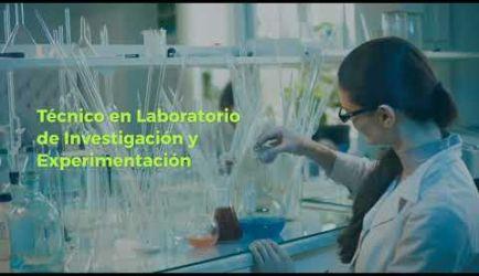Formación de Laboratorio de Diagnóstico Clínico: vídeo de los puestos de trabajo que ofrece el curso al obtener el título