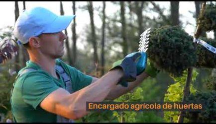 Vídeo de los puestos de trabajo y el salario que gana un graduado a Distancia del Curso Formativo de Paisajismo y Medio Rural