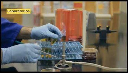 Vídeo sobre salidas laborales y el salario que ganará un graduado a Distancia de la Formación de Microbiología e Higiene Alimentaria