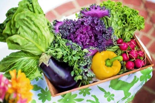 Curso de Nutrición y Herbodietética