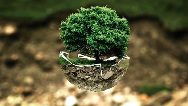 Curso de Técnico en Gestión Ambiental